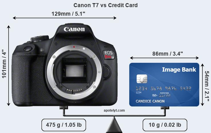 Canon T7 vs credit card front