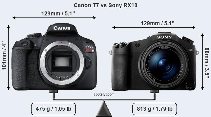 Size Canon T7 vs Sony RX10