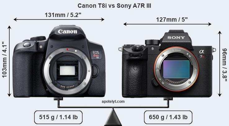 Size Canon T8i vs Sony A7R III