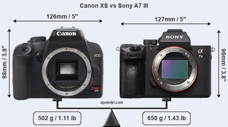 Size Canon XS vs Sony A7 III