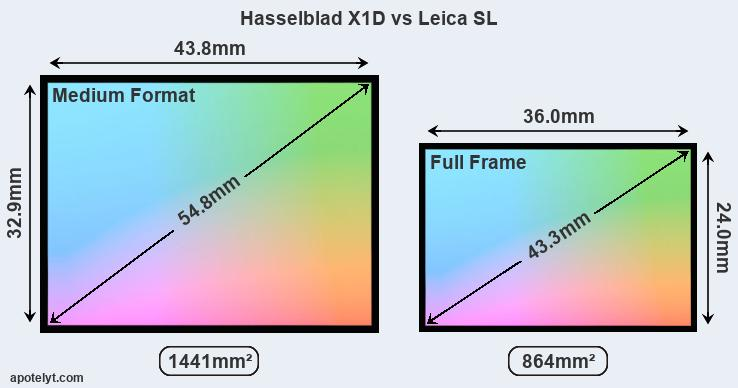 Hasselblad X1D and Leica SL sensor measures