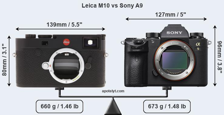 Compare leica m10 vs sony a9
