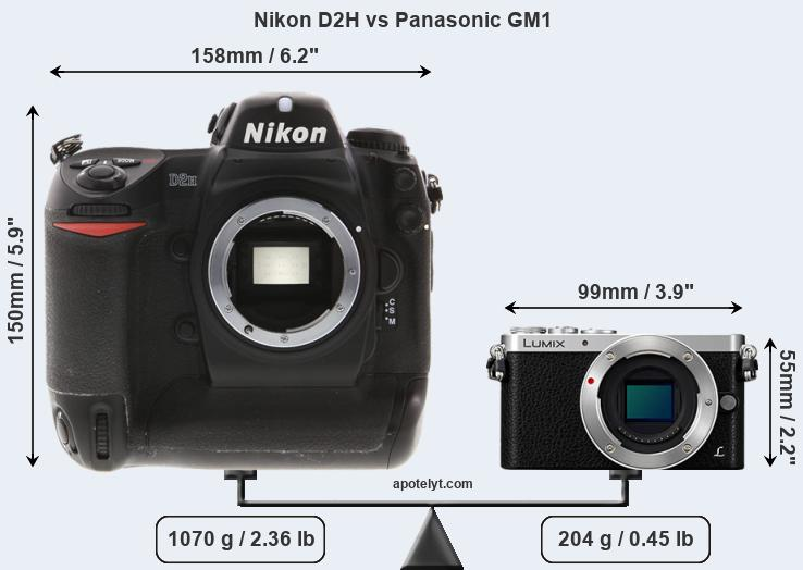 Size Nikon D2H vs Panasonic GM1