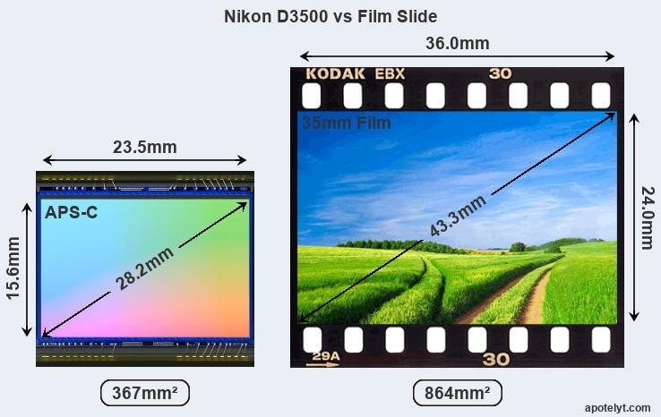 Nikon D3500 Comparison Review