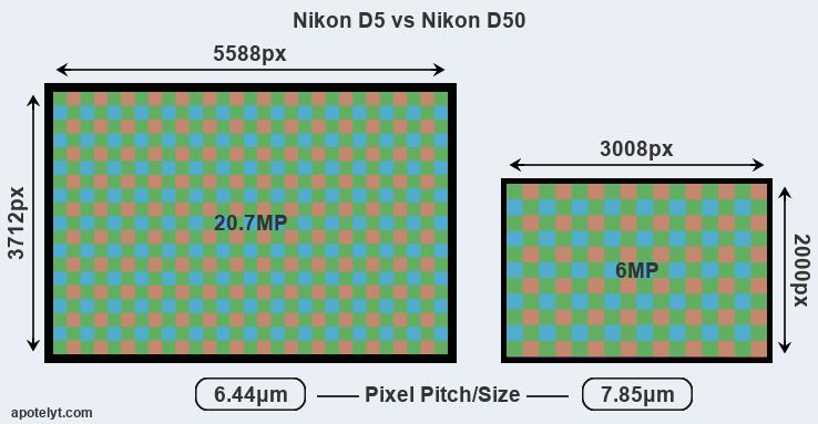 Nikon D5 vs Nikon D50 Comparison Review