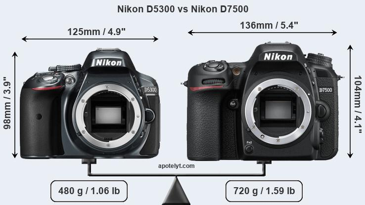 Nikon D5300 and Nikon D7500 sensor measures