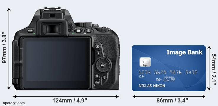 D5600 and credit card rear side