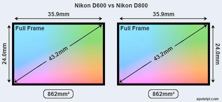 Nikon D600 vs Nikon D800 Comparison Review