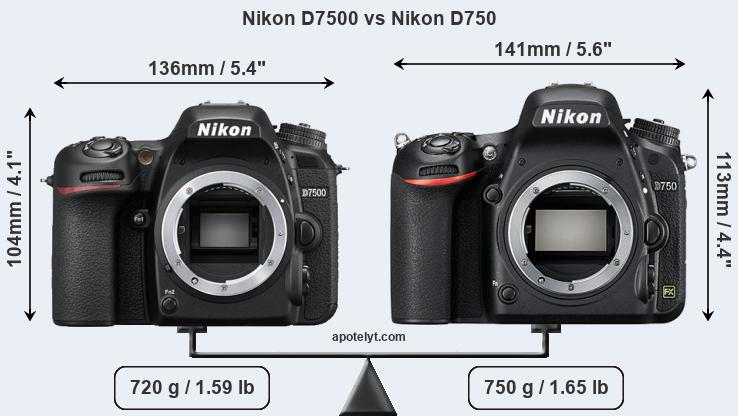 Nikon D7500 and Nikon D750 sensor measures