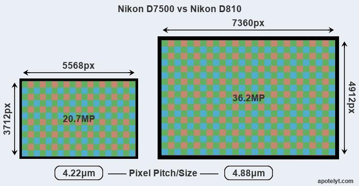 Nikon D7500 vs Nikon D810 Comparison Review