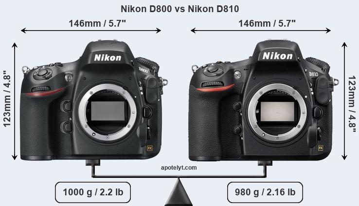 Nikon D800 Vs D810 >> Nikon D800 Vs Nikon D810 Comparison Review