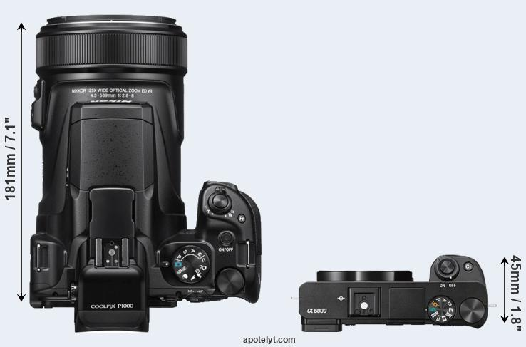 Nikon P1000 vs Sony A6000 Comparison Review