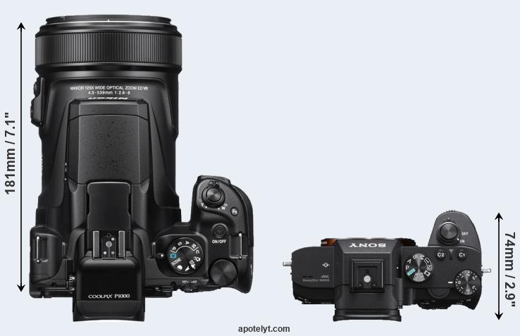Nikon P1000 vs Sony A7 III Comparison Review