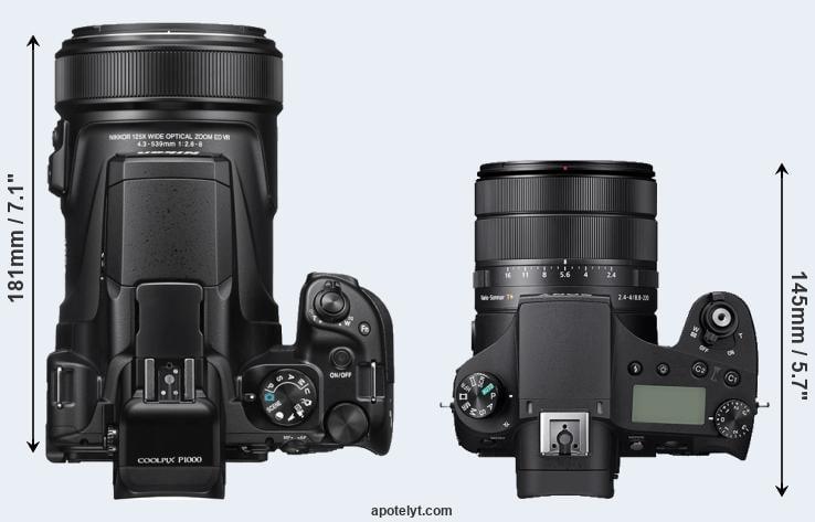 Nikon P1000 vs Sony RX10 IV Comparison Review