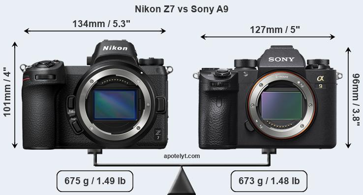 Compare Nikon Z7 And Sony A9