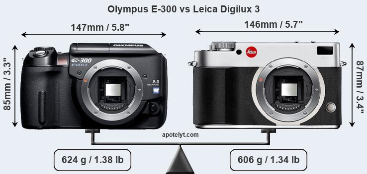 olympus e 300 vs leica digilux 3 comparison review rh apotelyt com Digilux 3 Manual Leica Camera