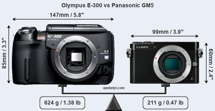 Size Olympus E-300 vs Panasonic GM5