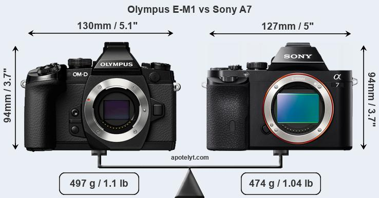 Size Olympus E-M1 vs Sony A7