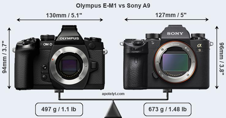 Compare Olympus E-M1 and Sony A9