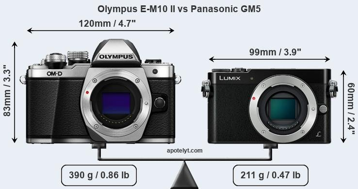 Compare Olympus E-M10 II and Panasonic GM5