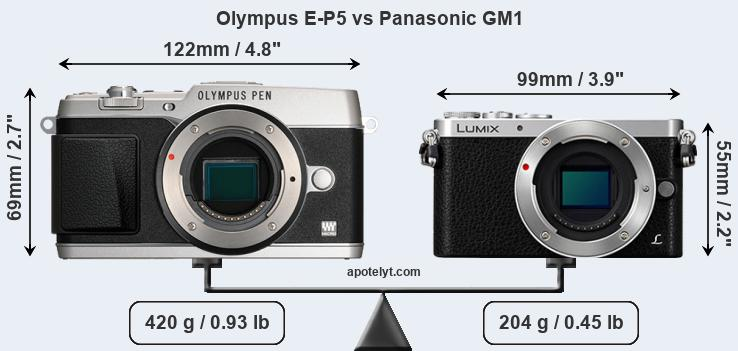 Size Olympus E-P5 vs Panasonic GM1