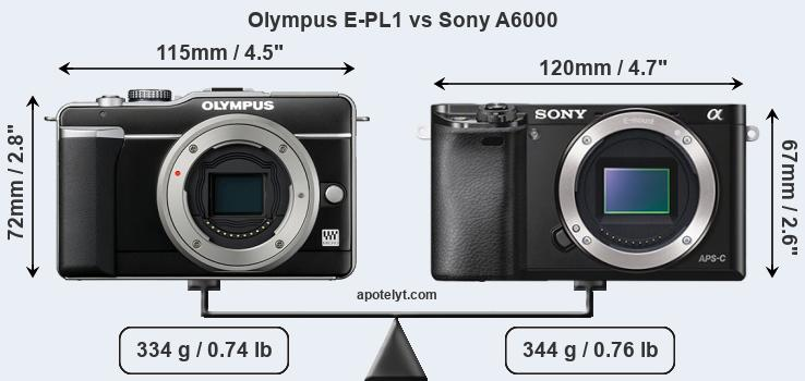 Size Olympus E-PL1 vs Sony A6000