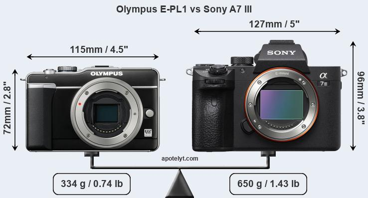 Size Olympus E-PL1 vs Sony A7 III