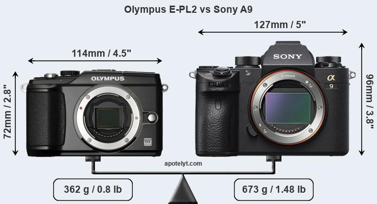 Size Olympus E-PL2 vs Sony A9