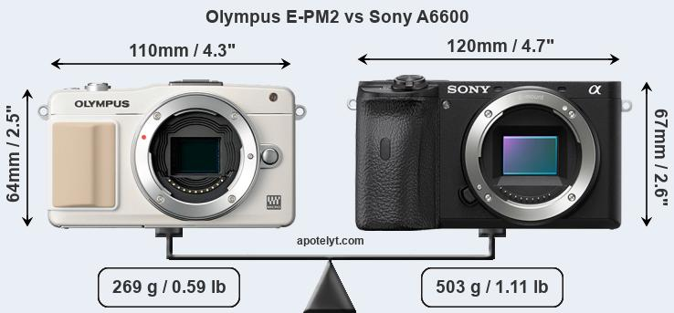 Size Olympus E-PM2 vs Sony A6600