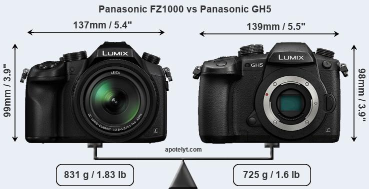 Size Panasonic FZ1000 vs Panasonic GH5
