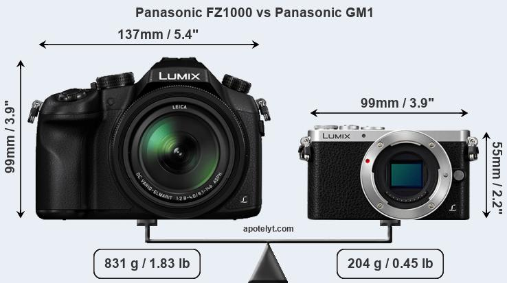 Size Panasonic FZ1000 vs Panasonic GM1