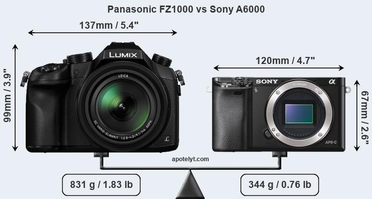 Panasonic FZ1000 vs Sony A6000 front