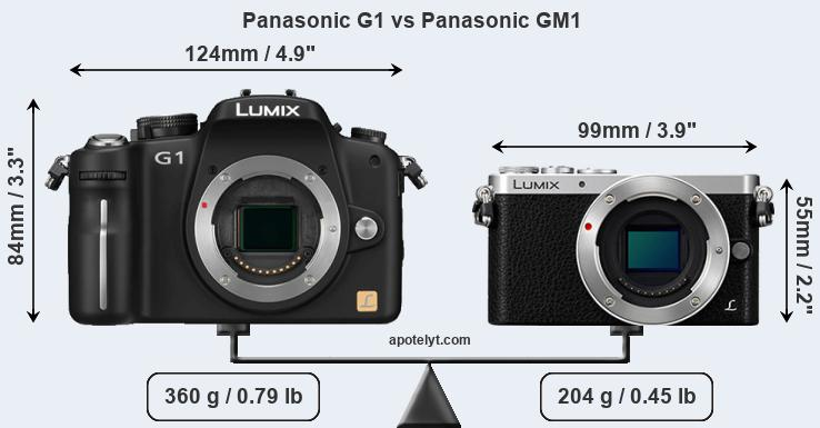 Size Panasonic G1 vs Panasonic GM1