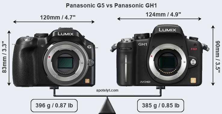 Size Panasonic G5 vs Panasonic GH1
