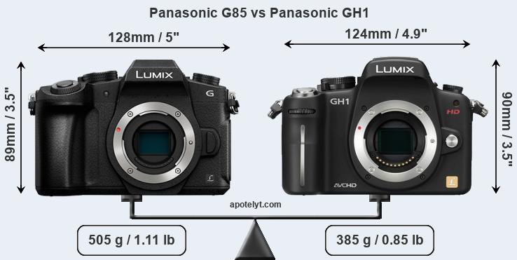 Size Panasonic G85 vs Panasonic GH1