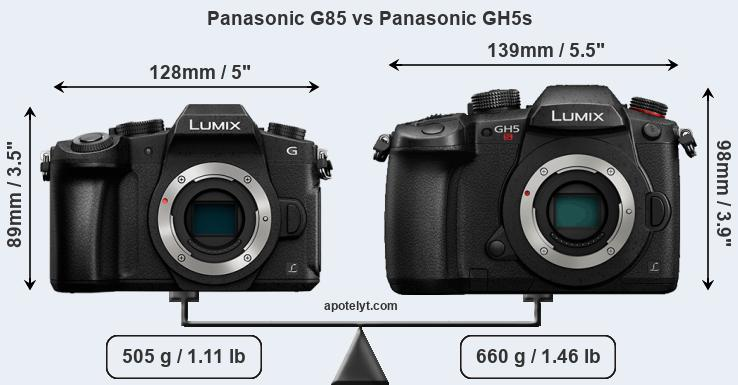 Size Panasonic G85 vs Panasonic GH5s