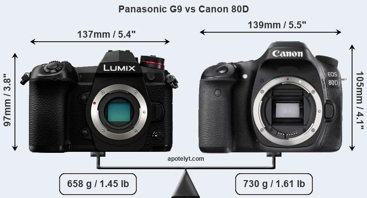 Compare Panasonic G9 vs Canon 80D