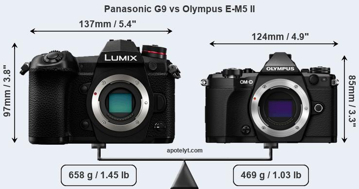 Panasonic G9 and Olympus E-M5 II sensor measures