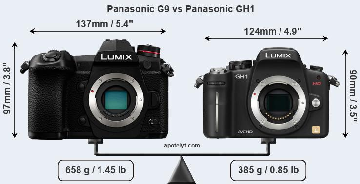 Size Panasonic G9 vs Panasonic GH1