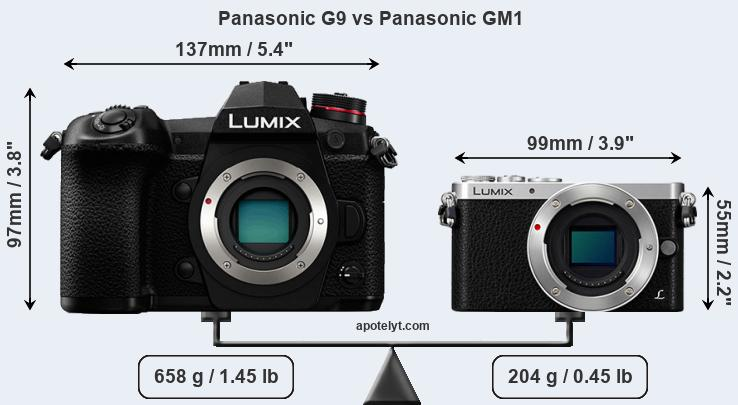 Size Panasonic G9 vs Panasonic GM1