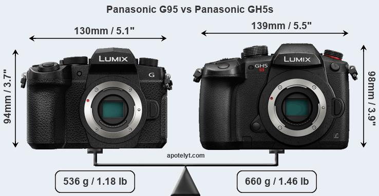 Size Panasonic G95 vs Panasonic GH5s