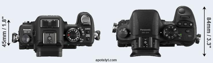 GH1 versus GH4 top view