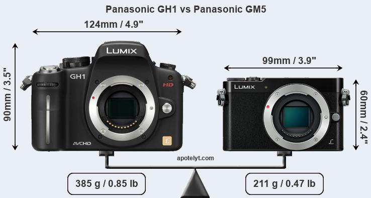 Size Panasonic GH1 vs Panasonic GM5