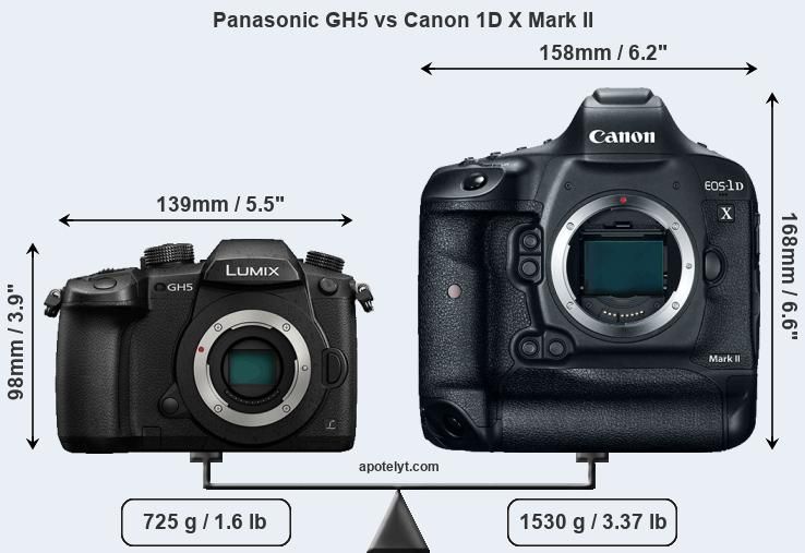 Snapsort Panasonic GH5 vs Canon 1D X Mark II