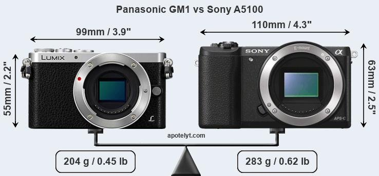 Size Panasonic GM1 vs Sony A5100