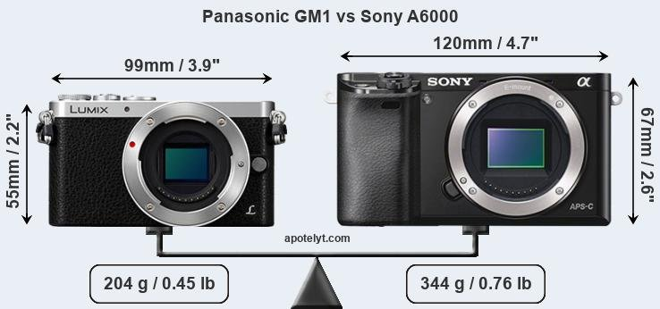 Size Panasonic GM1 vs Sony A6000