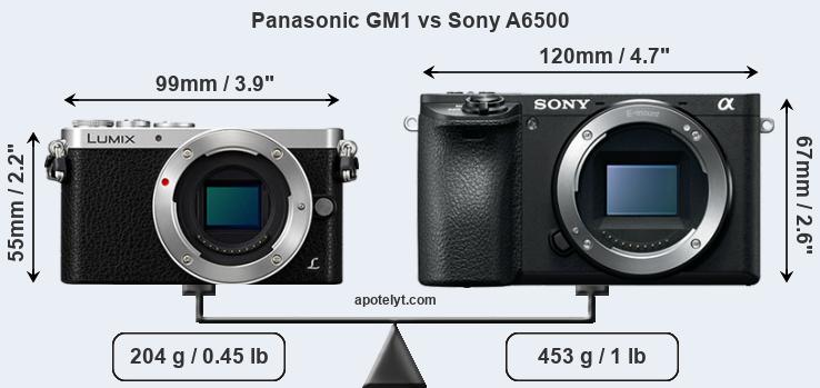 Size Panasonic GM1 vs Sony A6500