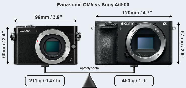 Size Panasonic GM5 vs Sony A6500