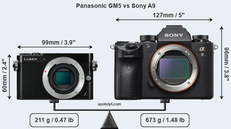 Size Panasonic GM5 vs Sony A9