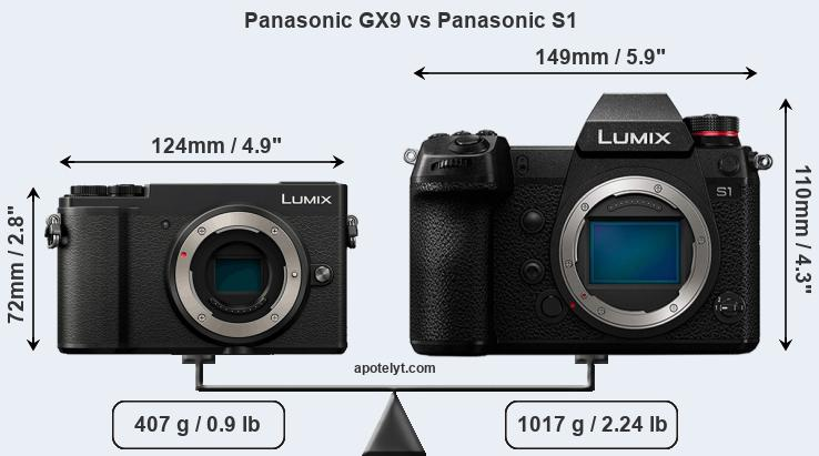 Size Panasonic GX9 vs Panasonic S1
